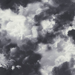 timeless_treasures_house_designer_wicked_eve_dark_clouds_in_cloud